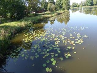 Specjalny Ośrodek Wychowawczy - Wycieczka do Białowieskiego Parku Narodowego